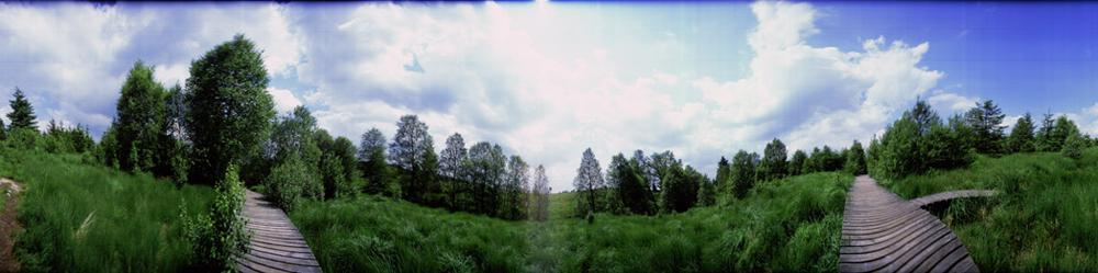VANVOLSEM - b_40x160cm