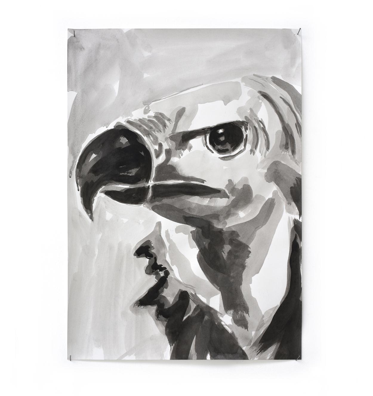 VERSCHEURE - Vulture#108_2019_41,7x29,5cm